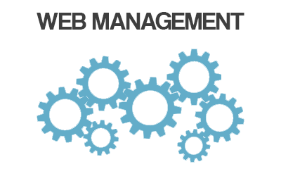 Manage your website for you